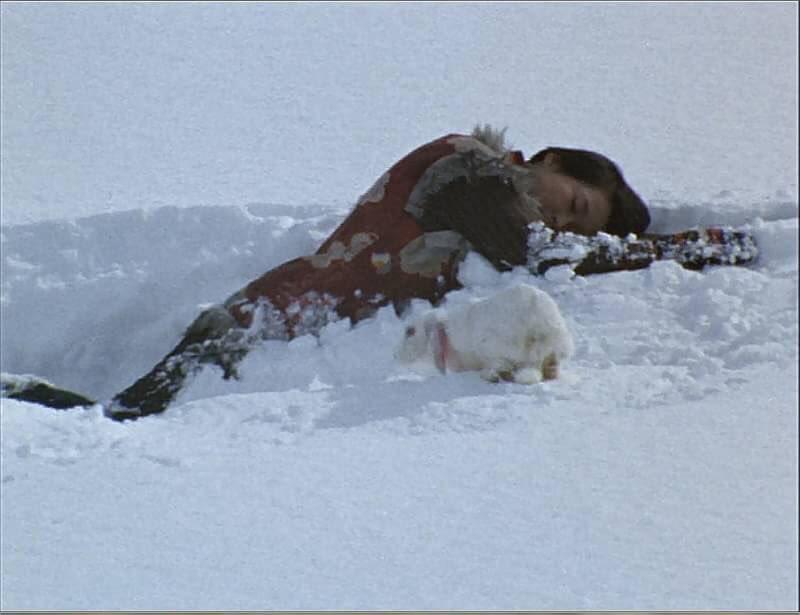 村人に追い立てられて力尽きて死んでゆく雪ん子。雪ん子の命が尽きるとともに、ウーも幻となって消えてしまった。