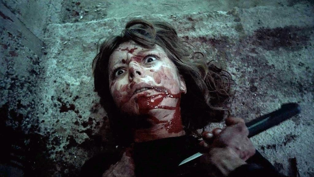 オーストリアの大量殺人犯のWerner Kniesek(ウェルナー・クニーセク)という実在のサイコキラーをモデルにした主人公が殺人を犯していく様子を一人称で追っていく構成のスラッシャー映画。