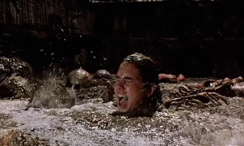 『フェノミナ』(Phenomena)は、元祖「美少女虐待スリラー」として語り継がれている名作。ジェニファー(演:ジェニファー・コネリー)が蛆虫だらけのプールに落ちるシーンは、観客の心に強烈な印象を残した。