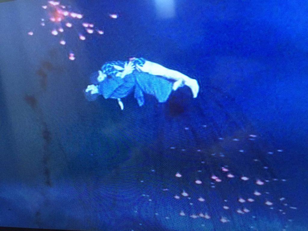 江戸川乱歩全集 恐怖奇形人間(1969年)の有名なラストシーン「おかーさーん」