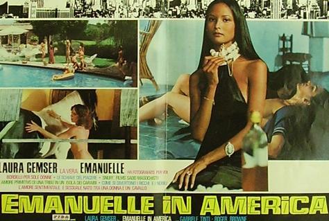 『エマニュエル・イン・アメリカ』は、イタリア映画のもどきシリーズであるラウラ・ジェムサー主演のエマニュエルである「黒いエマニュエル」モノの3作目。