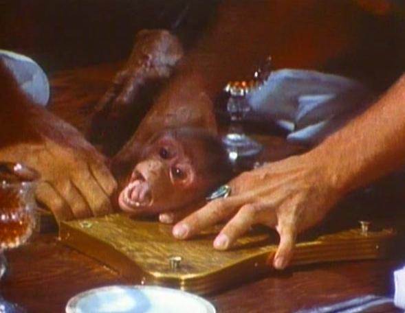 猿の脳みそ料理。中東のシーンにおいて、伝統的な食事をしている一団が猿脳(えんのう)を食するため穴の開いたテーブルを使っている。