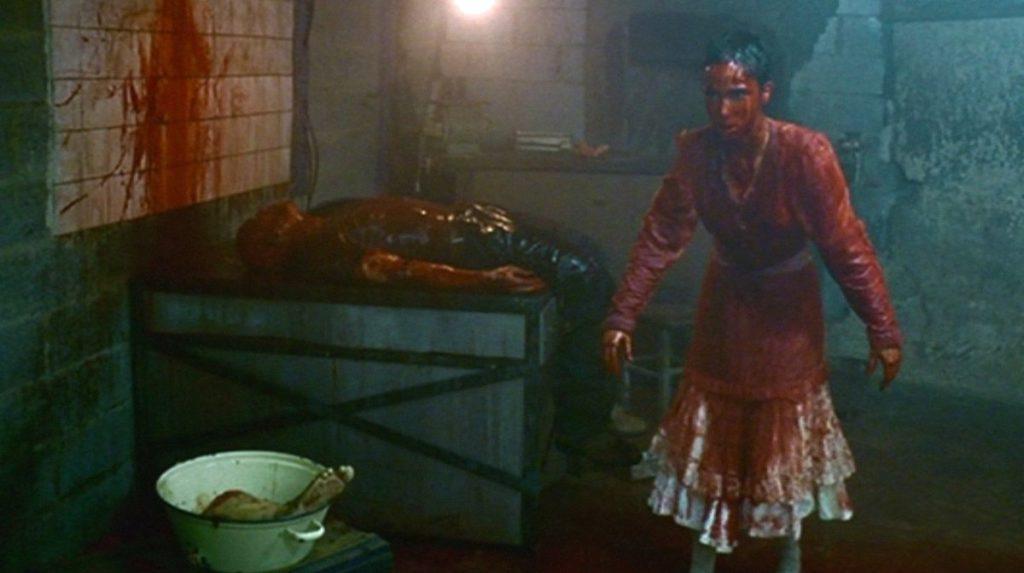 囚われた妊婦ヤスミンを襲う恐怖・狂気・逃亡・闘争。血だるまになるヒロインが凄絶な反撃を開始する終盤のカタルシスは素晴らしい。