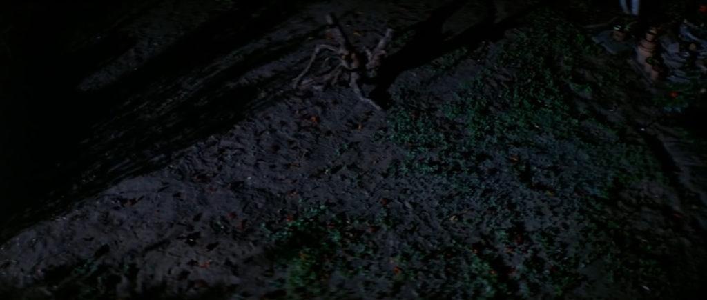 ラストシーンでは、6発の銃弾を撃ち込まれ、2階から落下したにも関わらず、忽然と姿を消してしまう。ファンタジーとリアルの世界を行き来するマイケルは伝説のブギーマンなのだろうか?