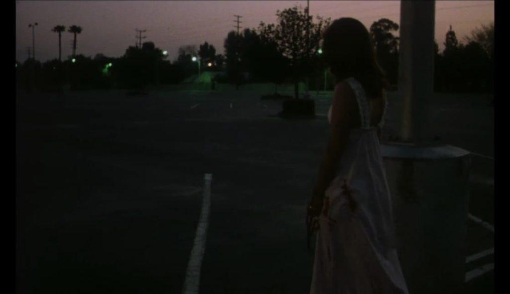 ラストシーンでは(おそらく眠っている隙をついて、甥を殺害し脱出したと思われる)妹が血まみれのまま、呆然自失で駐車場を彷徨っているシーンが描かれ終わる。