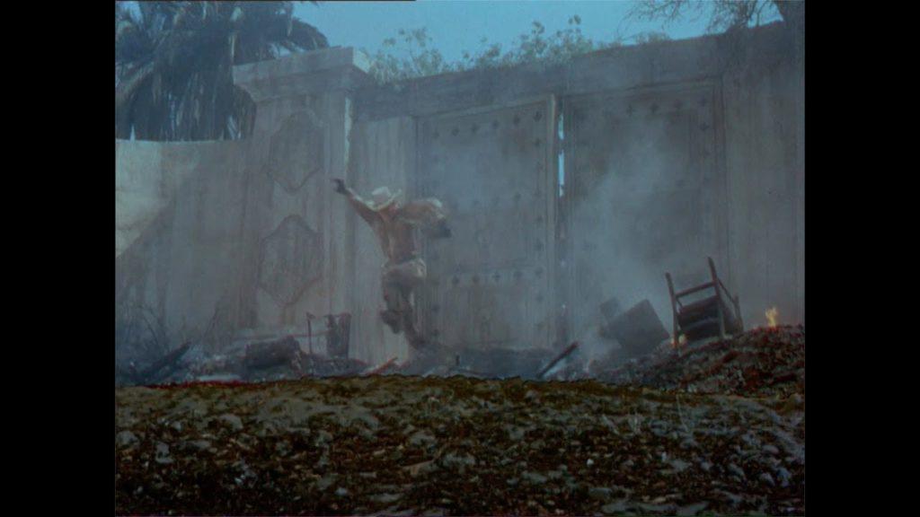 『黒い絨毯』(原題:The Naked Jungle)は、1954年制作のアメリカ合衆国のホラー・パニック映画。南米アマゾン川上流の開拓地を舞台に、人喰いアリの大群と農園主の戦いを描いたホラー・パニック映画。