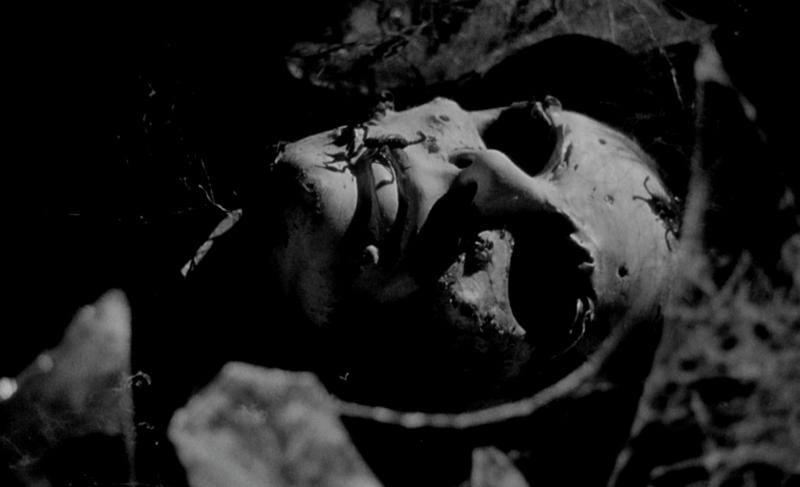 医師のクルーバイアン教授がヴァンダ城の納骨堂の棺の中で眠るアーサのマスクを脱がすと、穴だらけの顔をサソリが這いずり回っていた。