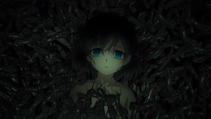 間桐桜は、長年に渡り蟲による凌辱という形で調整を受け続けてきた。
