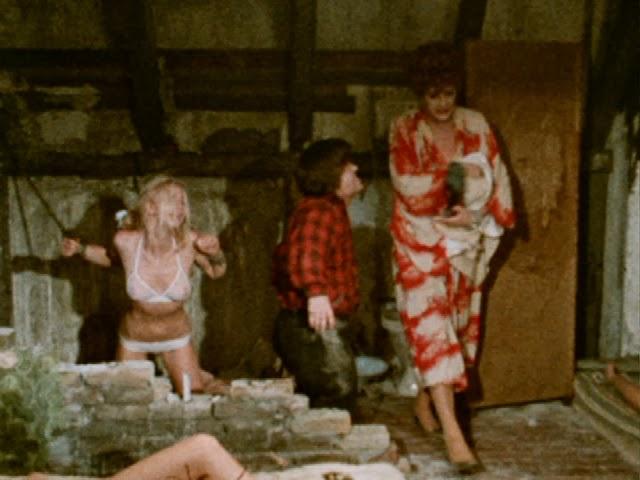一組の新婚夫婦が引っ越してきたあるアパートで起こる惨劇を描いた官能バイオレンスホラー。