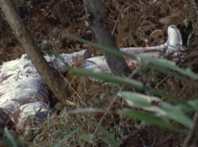 野に遺棄されたレオのバラバラ死体…現代では放送できない凄惨なシーン。