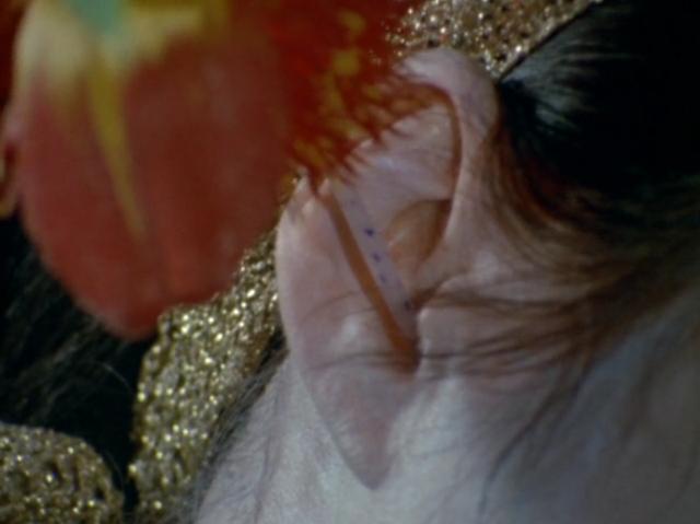 蔓が延びた花(吸血植物バサラの体毛)が耳から血を吸うトラウマシーン。人一人の血液を吸い尽くして殺すたびに、体の体毛に『恨み花』と呼ばれる不気味な血のような真っ赤な花が咲くとされている。失血死する様が恐ろしいのでトラウマ怪獣に挙げられる。