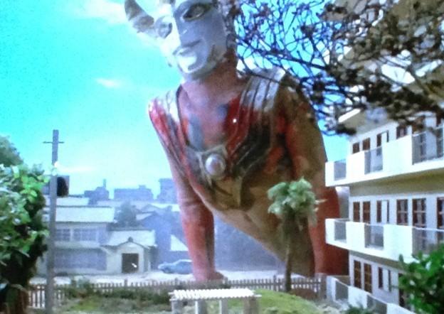 タロウを嘴でめった刺しにして惨殺した。ウルトラシリーズ屈指の残酷なトラウマシーンとなった。