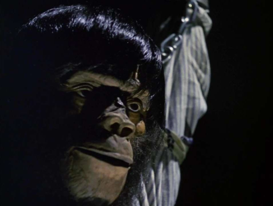 猿人ゴリーは、ゴーロン星人の脳波交換装置により、モンキーランドの飼育員が変貌させられた姿。通常は普通の人間であるが、激しく興奮すると猿人に変身して怪力を発揮する。ゴリーの変貌する恐怖は、SFモンスターホラーそのもの。ゴリーは怒り狂い猿人間になりアンヌを助けた。