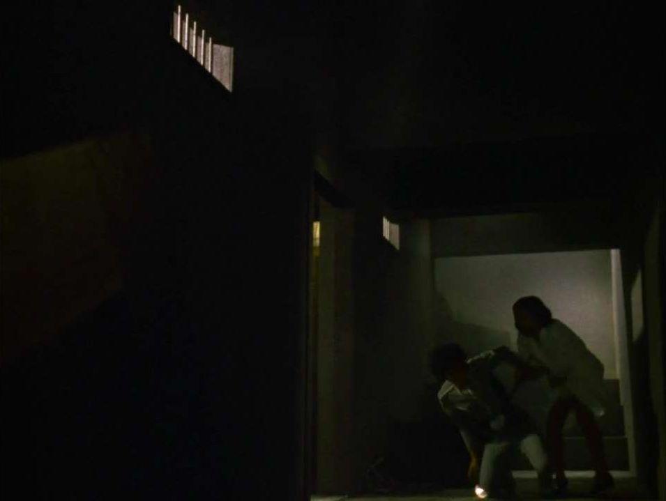 アンヌは地下室に辿り着いた…中からはムチの音と叫び声が聞こえた…アンヌが地下室をのぞいていたところを、あっけなく助士につかまって猿人間にされかける。
