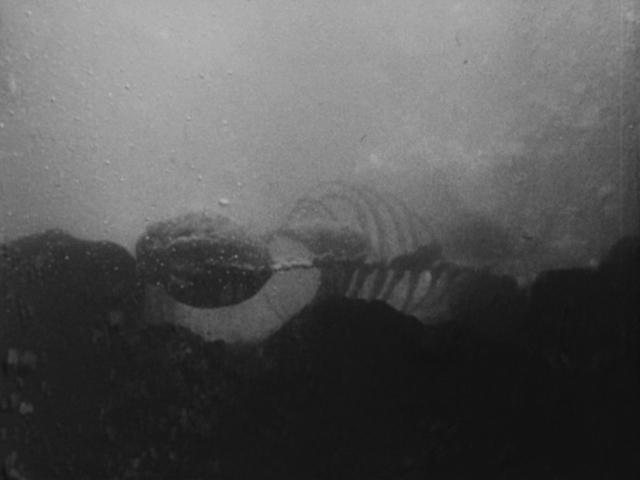 オキシジェン・デストロイヤーは特殊な物質を電磁的に反応させることにより水中の酸素を一瞬で破壊し、その場にいるすべての生物を一瞬のうちに死に至らしめるうえ、完全に液化する効果がある。ゴジラでさえ例外ではなかった。