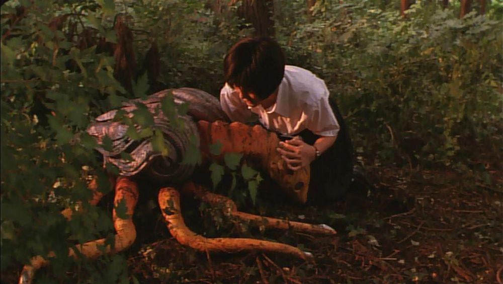 比良坂綾奈(前田愛)は、イリスが両親の仇ガメラを殺すことを願い、密かに育てていく。