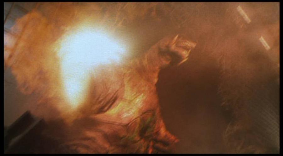 邪神イリスは、ガメラ渾身の一撃「バニシング・フィスト」を腹部に打ち込まれ、爆発四散。その頭部はガメラに踏み潰された。