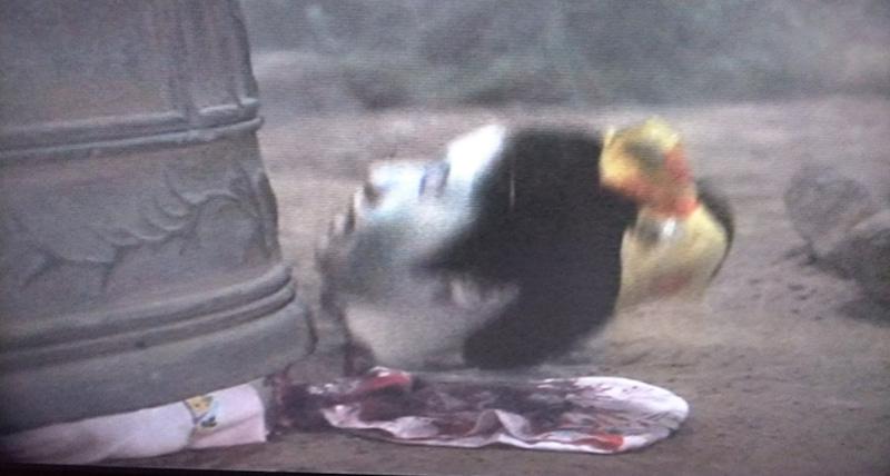 鬼頭雪枝の首が切断されて、首チョンパに。転がっていく生首を見て、周囲から悲鳴が上がった。