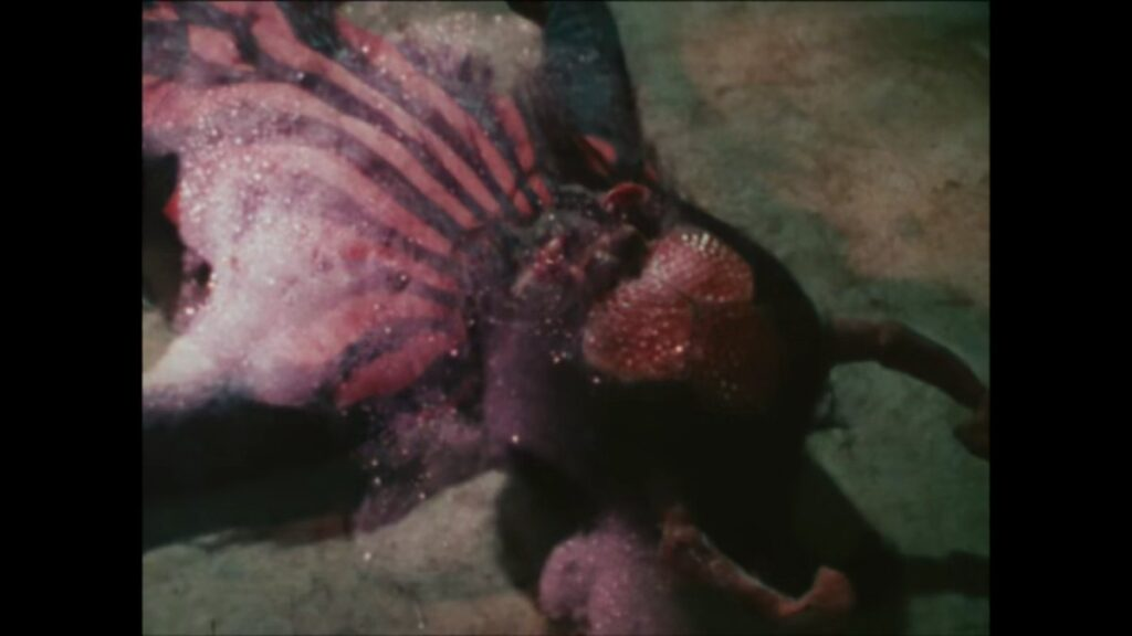 ライダーキックを食らい敗れた蜘蛛男も泡になって溶けて消滅した。