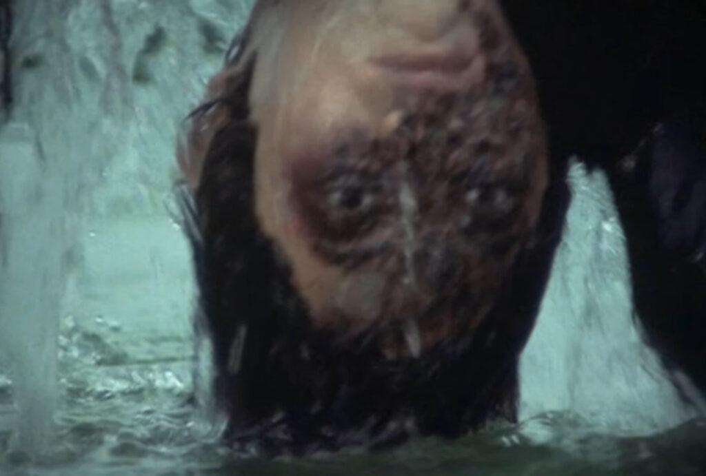 水面から引き上げた時に露出したグロテスクな素顔から、佐清の死体と思われたが、マスク姿の佐清の正体は、実は行方不明だった青沼静馬だった。