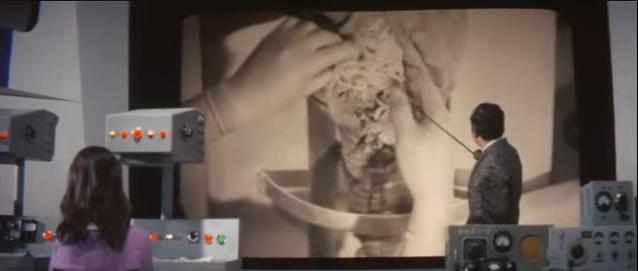 「ゾウの鼻を切開して寄生虫の塊を取り出す記録フィルム」は、伝説レベルのトラウマシーンとして名高い。