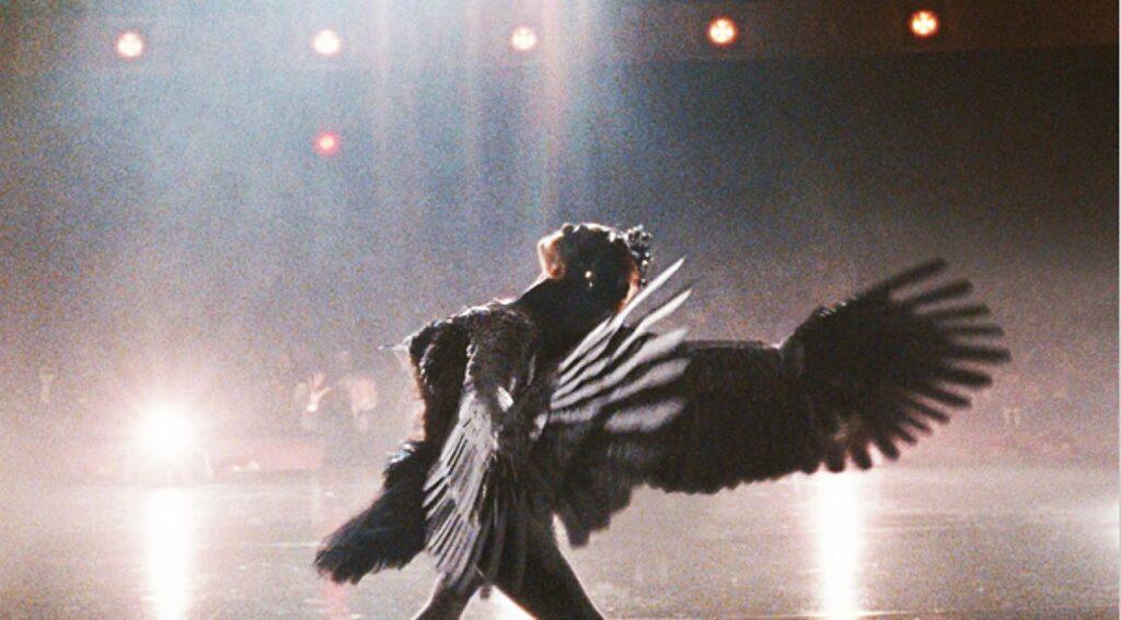 心身ともにブラック・スワンそのものとなったニナは、最高のブラック・スワンを踊りきった。