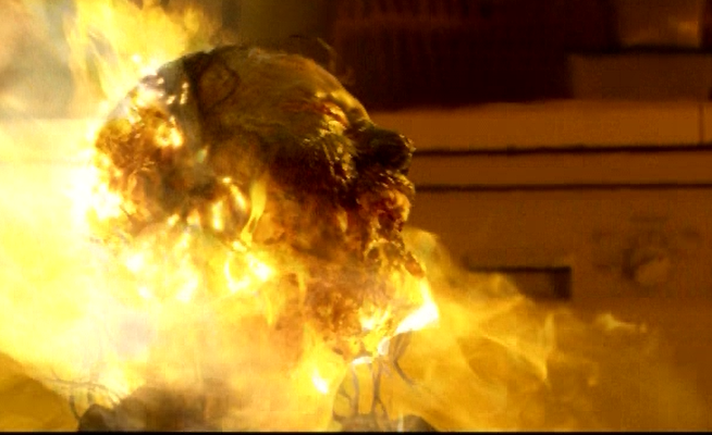 サラは、油断している屋敷女が見せた隙を逃さなかった。一服していた屋敷女の顔面にスプレー攻撃で、屋敷女の顔面は大炎上。