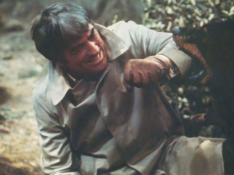 撮影中にはグレゴリー・ペックが演じる外交官を襲う設定のロットワイラー犬がスタントマンに噛み付いて大怪我を負わせた。